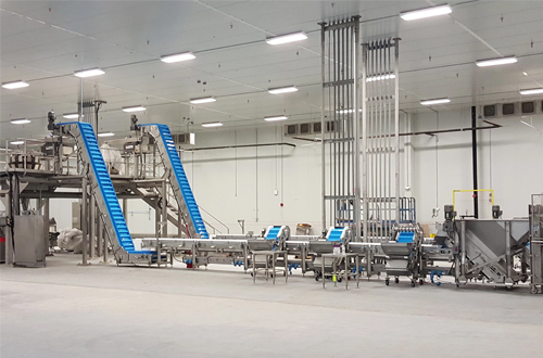 Specialty Transfer Conveyors for Weigh Scales and Vertical Form Fill Baggers